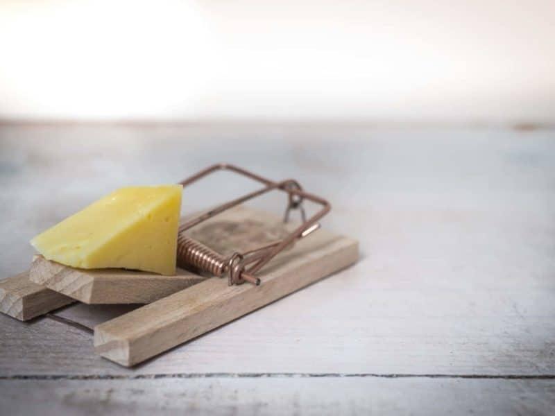 piege de l'entrepreneuriat