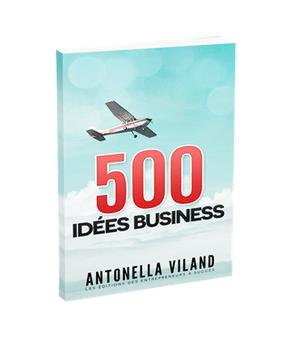 T l chargez le livre cr ation d 39 entreprise id e business for Idee creation entreprise etranger