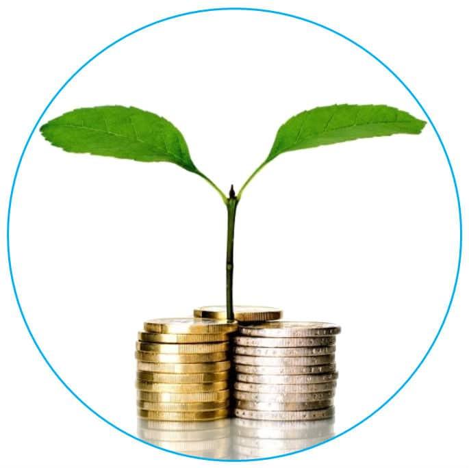 Faire pousser de l 39 argent ma cr ation d 39 entreprise for Idee entreprise rentable