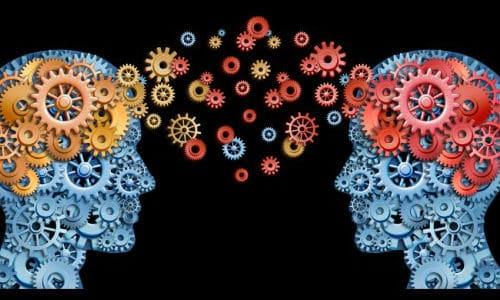 comment apprendre cerveaux