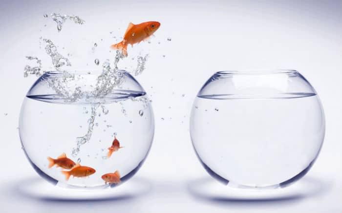 Take-a-Big-Leap