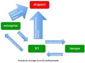 SCI professionnelle