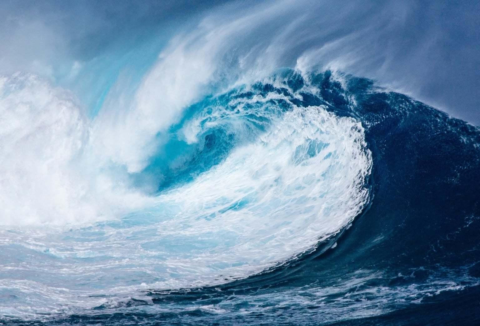 developper plus vite son business dans l'ocean bleu